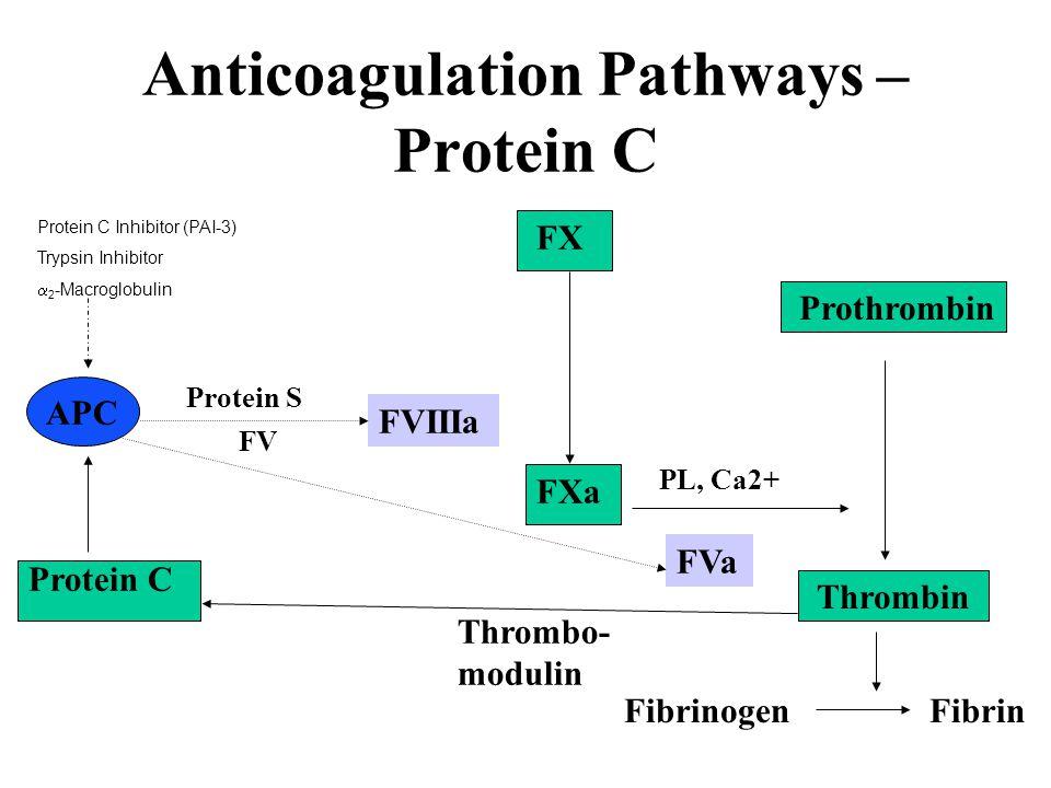 Anticoagulation Pathways – Protein C FVIIIa FXa FX FVa PL, Ca2+ Prothrombin Thrombin Fibrinogen Fibrin Protein C APC Thrombo- modulin FV Protein S Pro