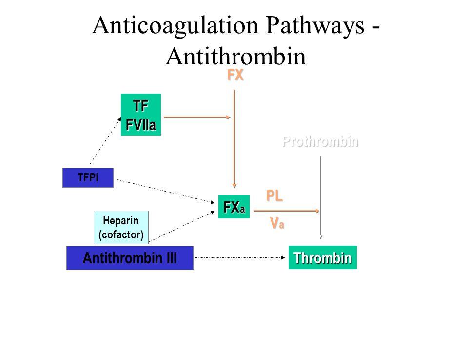Thrombin FX a VaVaVaVa Prothrombin PL FX Anticoagulation Pathways - Antithrombin Antithrombin III TFFVIIa TFPI Heparin (cofactor)