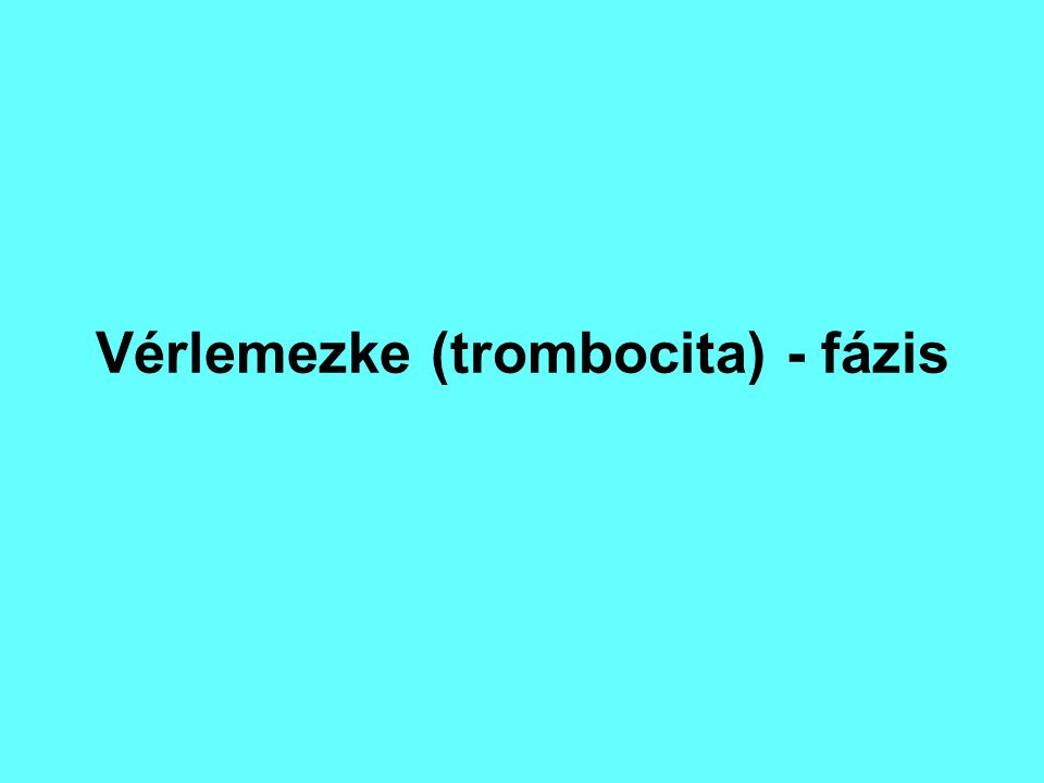 Vérlemezke (trombocita) - fázis
