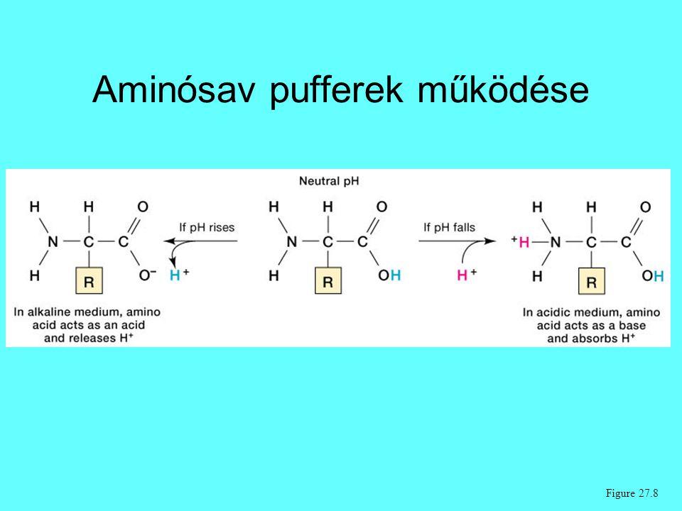 Aminósav pufferek működése Figure 27.8