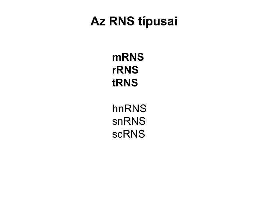 Az RNS típusai mRNS rRNS tRNS hnRNS snRNS scRNS