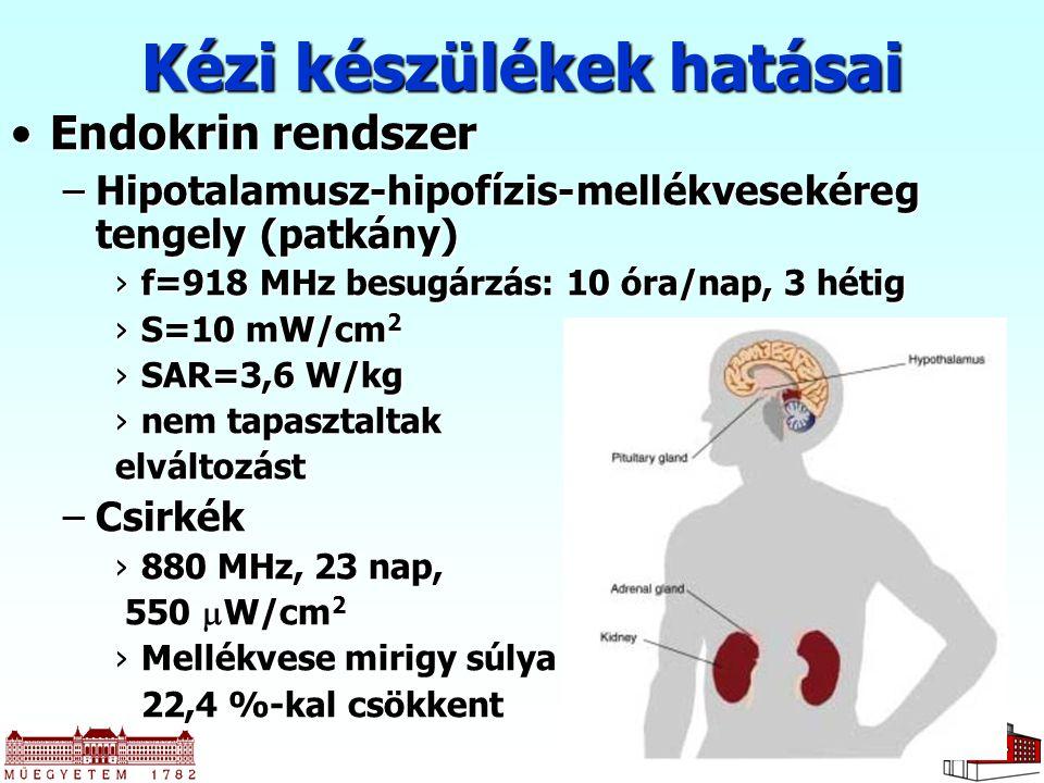 18 Endokrin rendszerEndokrin rendszer –Hipotalamusz-hipofízis-mellékvesekéreg tengely (patkány) ›f=918 MHz besugárzás: 10 óra/nap, 3 hétig ›S=10 mW/cm