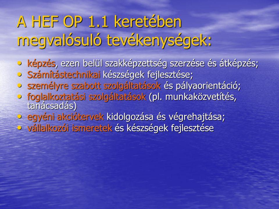 A HEF OP 1.1 keretében megvalósuló tevékenységek: valamennyi, a munkaügyi központok által az adott időszakban alkalmazott humán szolgáltatás (pl.