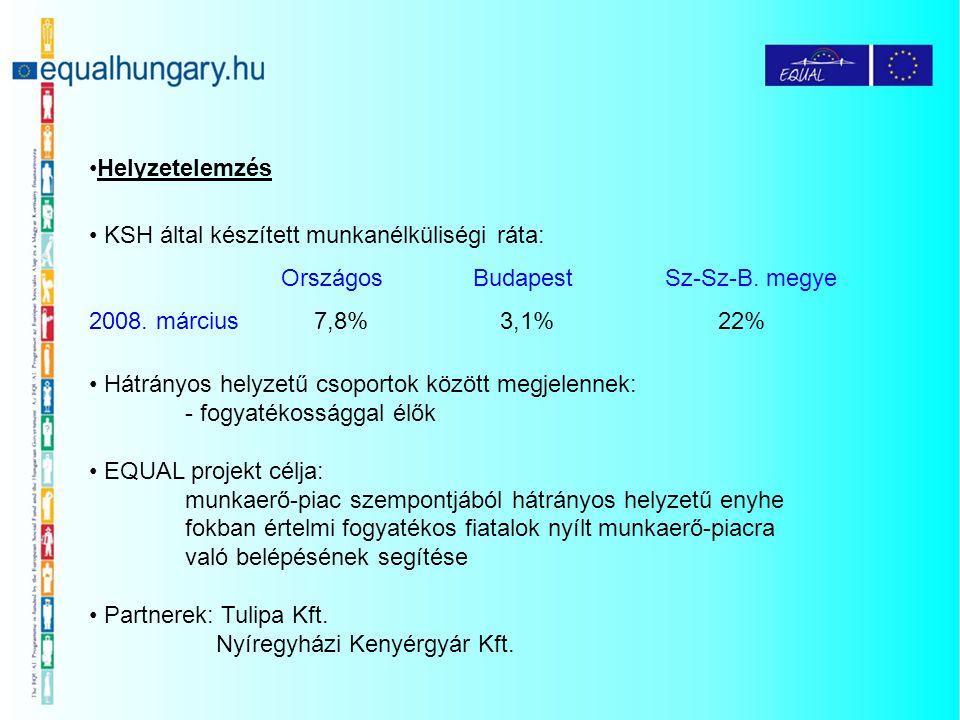 Helyzetelemzés KSH által készített munkanélküliségi ráta: OrszágosBudapestSz-Sz-B. megye 2008. március 7,8% 3,1% 22% Hátrányos helyzetű csoportok közö