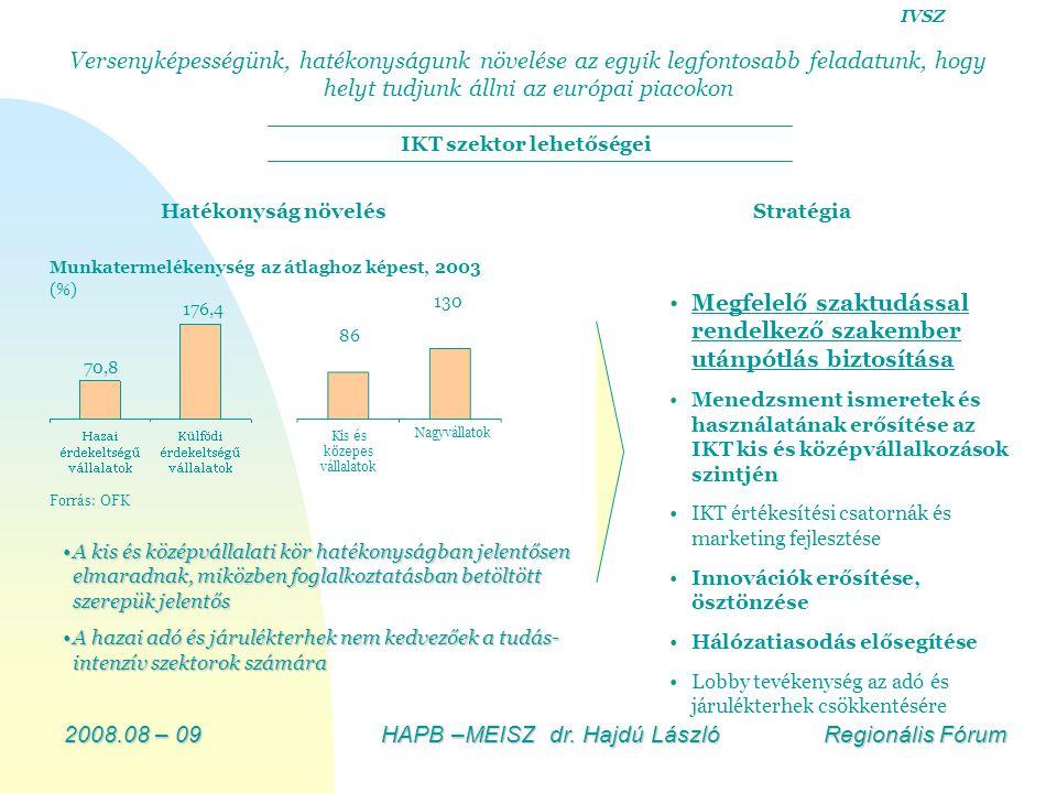 2008.08 – 09HAPB –MEISZ dr. Hajdú László Regionális Fórum Stratégia A kis és középvállalati kör hatékonyságban jelentősen elmaradnak, miközben foglalk
