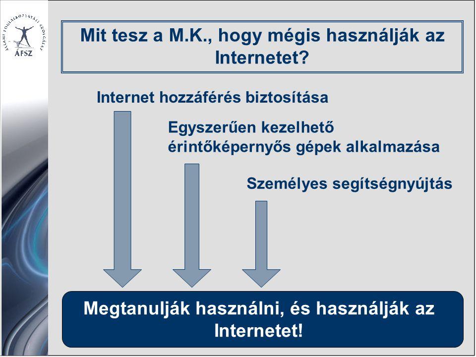 Megtanulják használni, és használják az Internetet.
