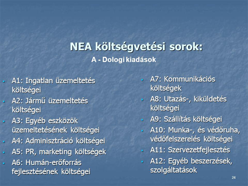 24 NEA költségvetési sorok:  A1: Ingatlan üzemeltetés költségei  A2: Jármű üzemeltetés költségei  A3: Egyéb eszközök üzemeltetésének költségei  A4