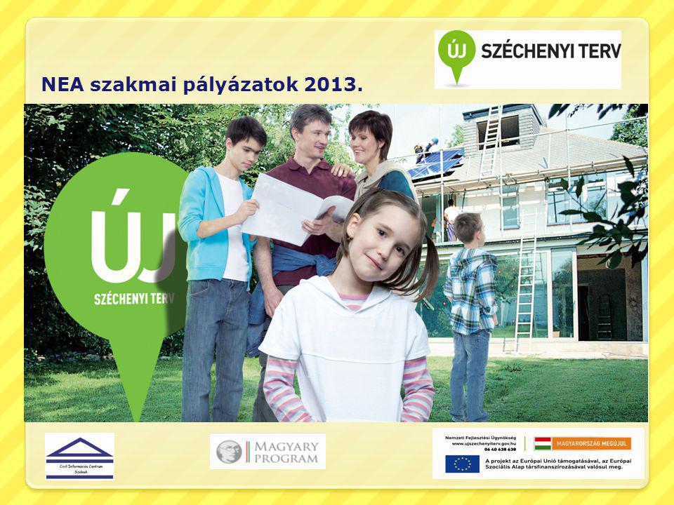 A pályázat benyújtásának keretei 2013.