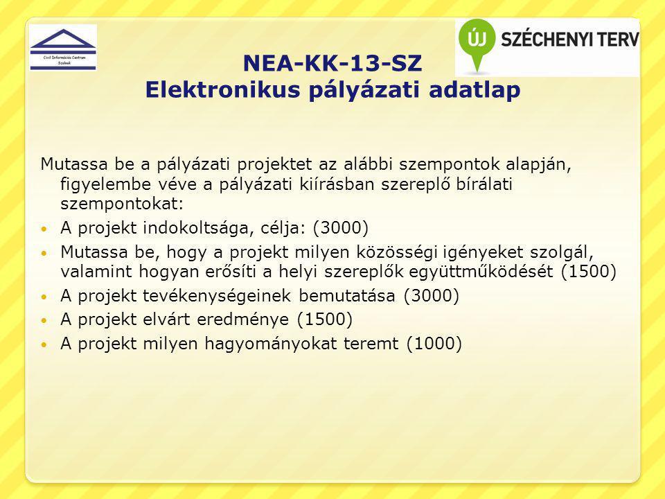 NEA-KK-13-SZ Elektronikus pályázati adatlap Mutassa be a pályázati projektet az alábbi szempontok alapján, figyelembe véve a pályázati kiírásban szere