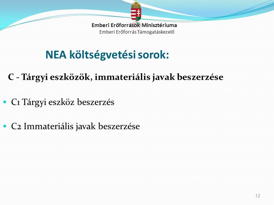 12 NEA költségvetési sorok: C - Tárgyi eszközök, immateriális javak beszerzése  C1 Tárgyi eszköz beszerzés  C2 Immateriális javak beszerzése Emberi