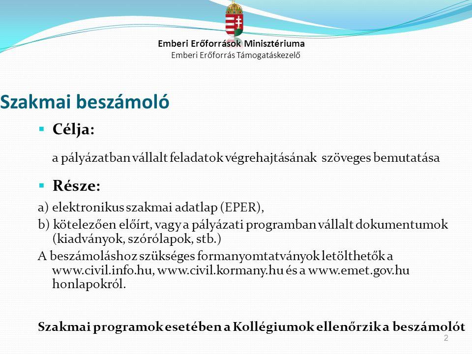 2 Szakmai beszámoló  Célja: a pályázatban vállalt feladatok végrehajtásának szöveges bemutatása  Része: a) elektronikus szakmai adatlap (EPER), b) k