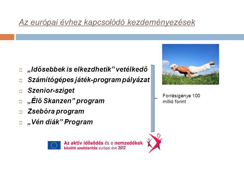 """Az európai évhez kapcsolódó kezdeményezések  """"Idősebbek is elkezdhetik vetélkedő  Számítógépes játék-program pályázat  Szenior-sziget  """"Élő Skanzen program  Zsebóra program  """"Vén diák Program Forrásigénye 100 millió forint"""