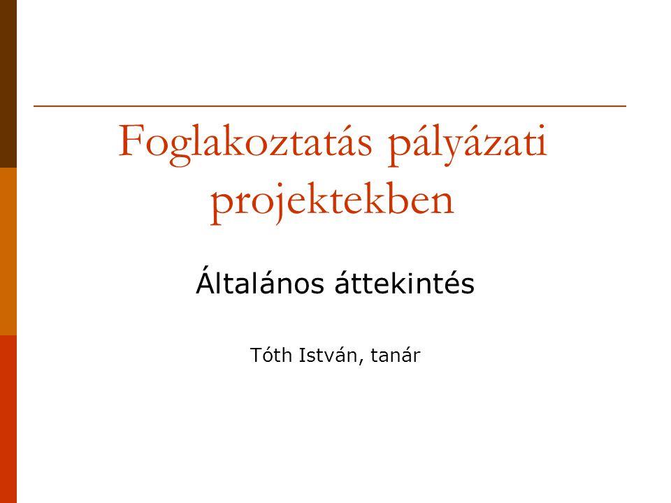 Foglakoztatás pályázati projektekben Általános áttekintés Tóth István, tanár