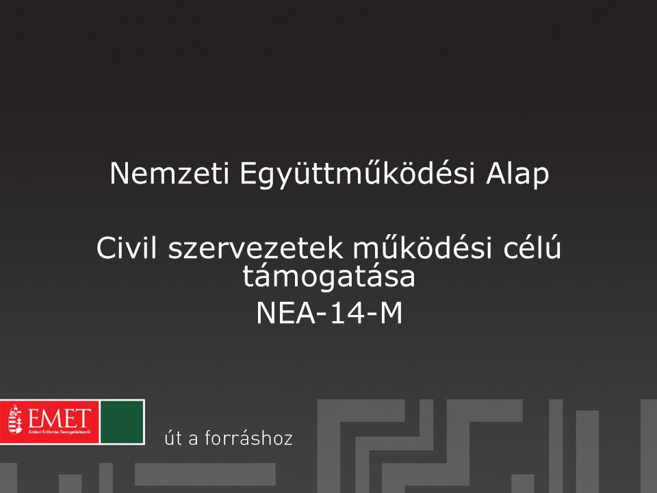 Formai bírálat (Formai hiánypótlásra nincs lehetőség!) NEA támogatására nem jogosult (érintett, vagy kizárt szervezetek); Regisztrációs nyilatkozat hiánya; Pályázati díj befizetése határidőben nem történt meg; 2013.