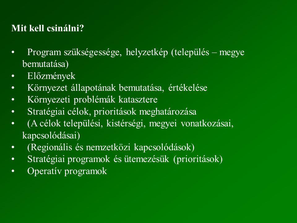 Mit kell csinálni? Program szükségessége, helyzetkép (település – megye bemutatása) Előzmények Környezet állapotának bemutatása, értékelése Környezeti