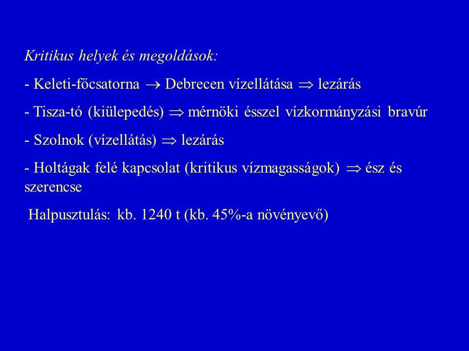 Kritikus helyek és megoldások: - Keleti-főcsatorna  Debrecen vízellátása  lezárás - Tisza-tó (kiülepedés)  mérnöki ésszel vízkormányzási bravúr - S