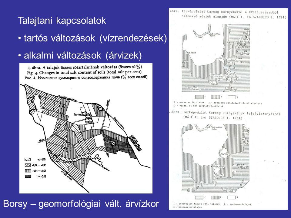 Talajtani kapcsolatok tartós változások (vízrendezések) alkalmi változások (árvizek) Borsy – geomorfológiai vált. árvízkor