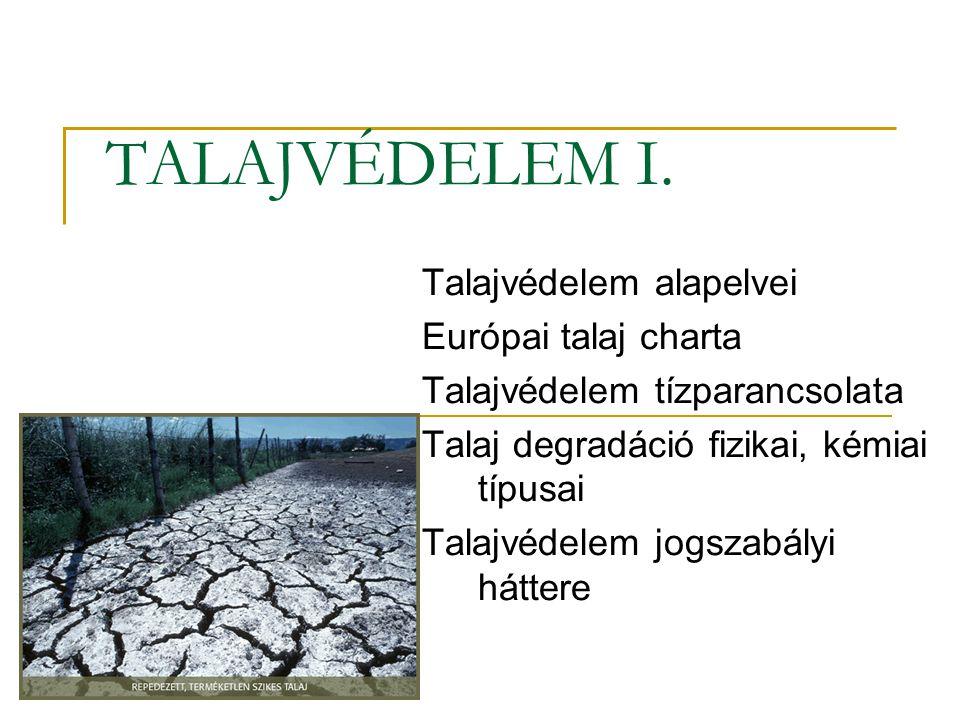 A termőföld helye és szerepe A föld szilárd részének mindössze 11%-a termőföld.