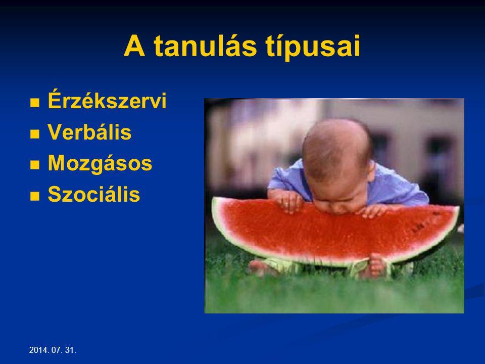 2014. 07. 31. A tanulás típusai Érzékszervi Verbális Mozgásos Szociális