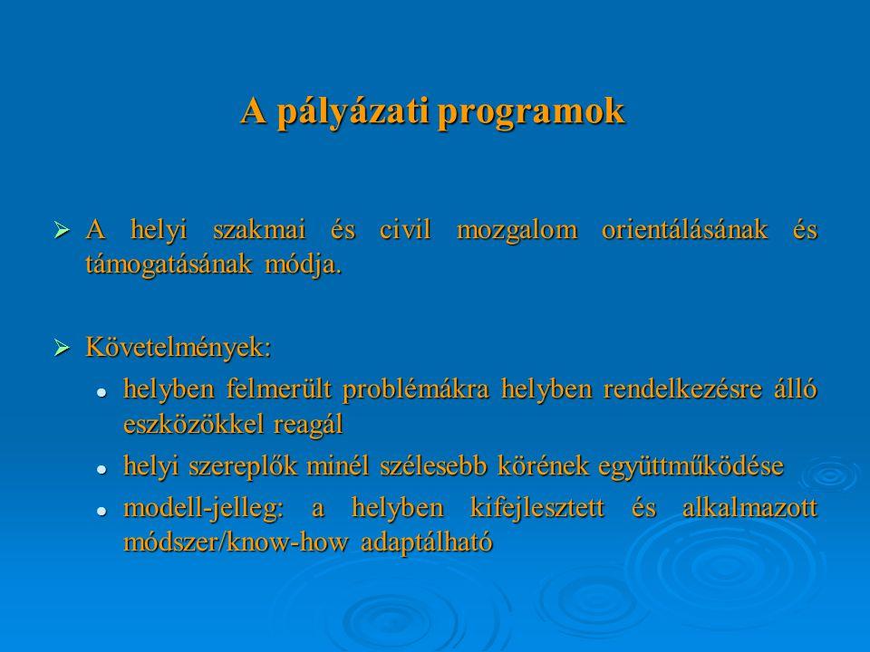 A pályázati programok  A helyi szakmai és civil mozgalom orientálásának és támogatásának módja.