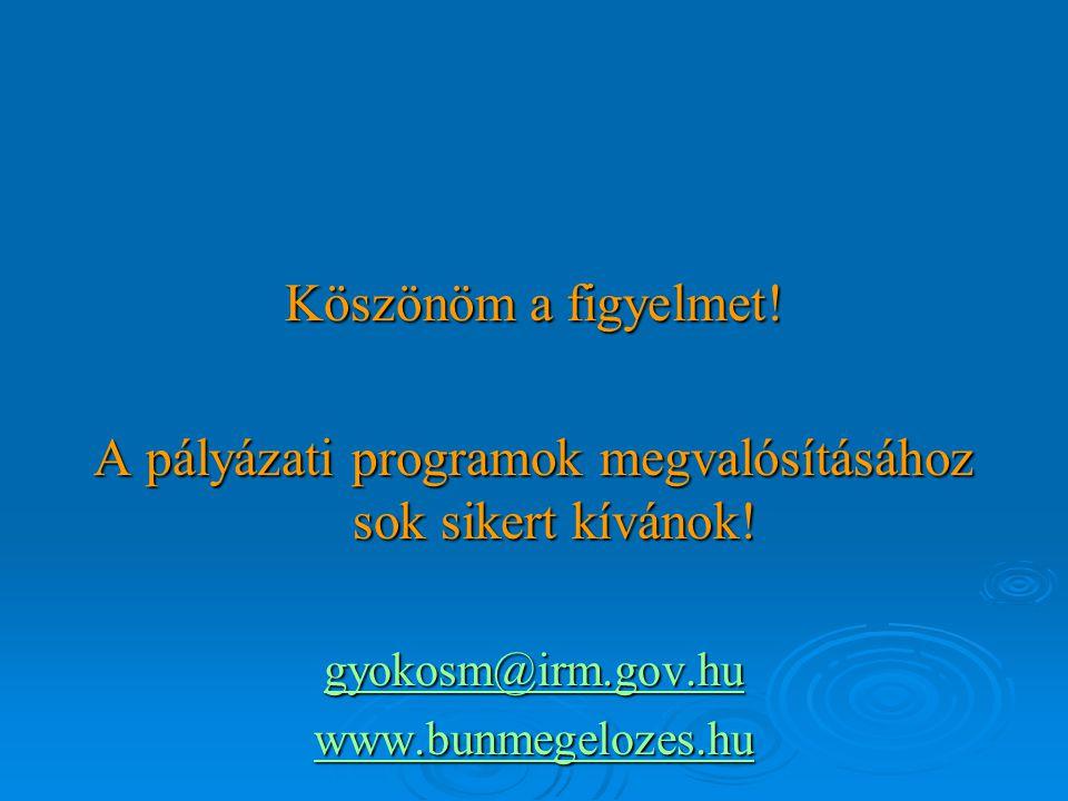 Köszönöm a figyelmet. A pályázati programok megvalósításához sok sikert kívánok.