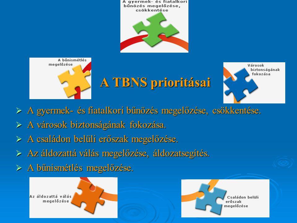 A TBNS prioritásai A TBNS prioritásai  A gyermek- és fiatalkori bűnözés megelőzése, csökkentése.