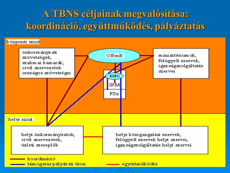 A TBNS céljainak megvalósítása: koordináció, együttműködés, pályáztatás