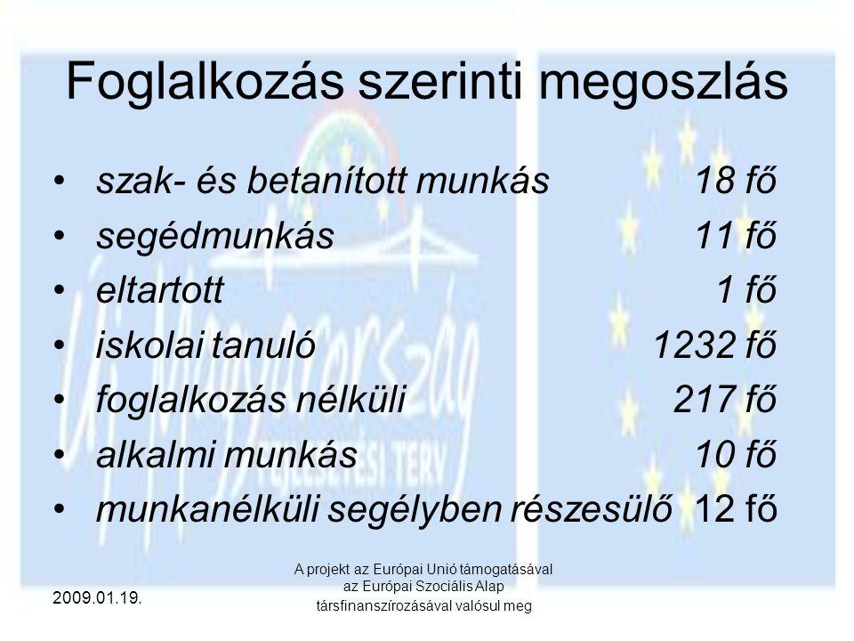 2009.01.19. A projekt az Európai Unió támogatásával az Európai Szociális Alap társfinanszírozásával valósul meg Foglalkozás szerinti megoszlás szak- é