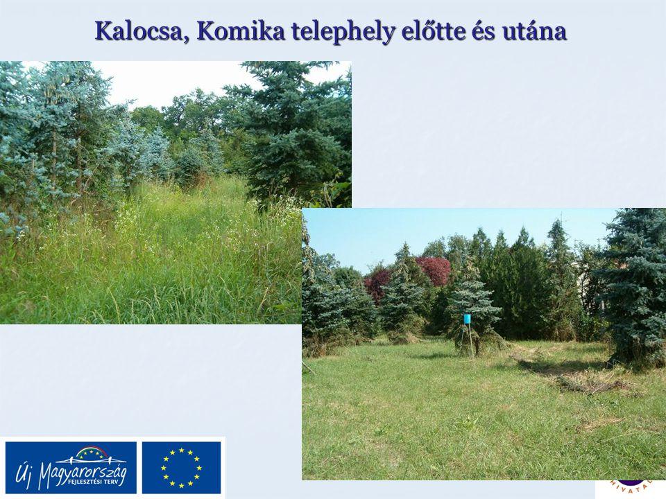 Kalocsa, Komika telephely előtte és utána