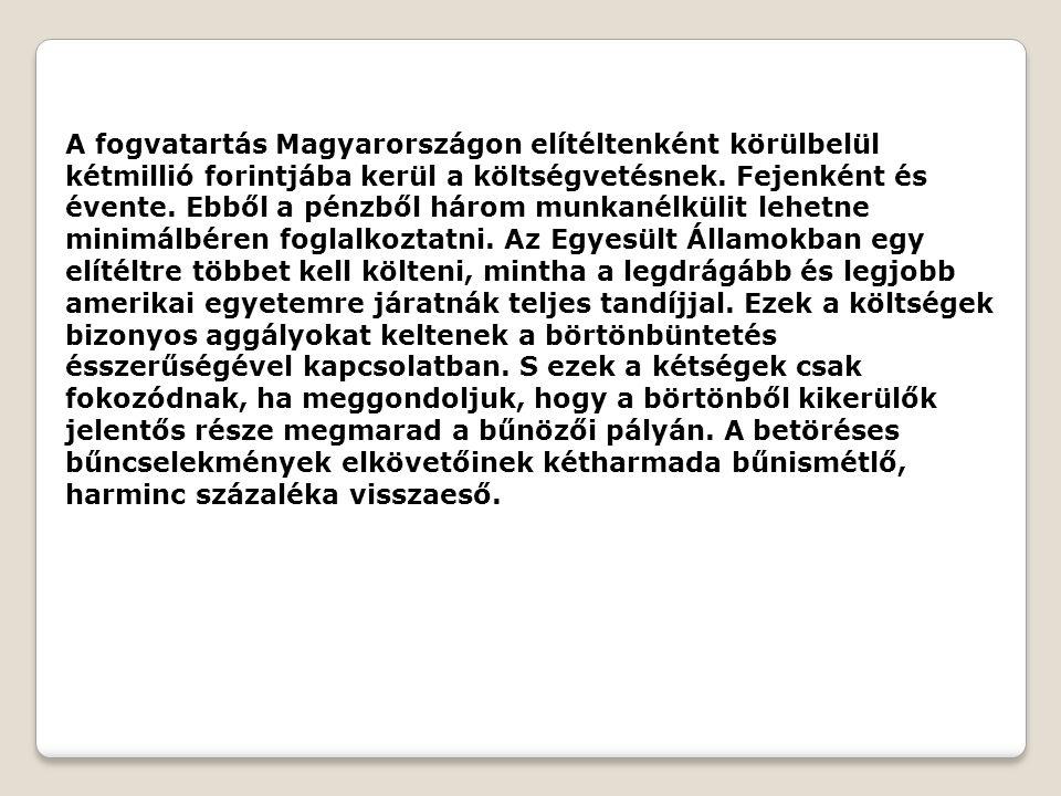 A fogvatartás Magyarországon elítéltenként körülbelül kétmillió forintjába kerül a költségvetésnek. Fejenként és évente. Ebből a pénzből három munkané