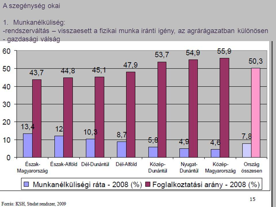 A szegénység okai 1.Munkanélküliség: -rendszerváltás – visszaesett a fizikai munka iránti igény, az agrárágazatban különösen - gazdasági válság
