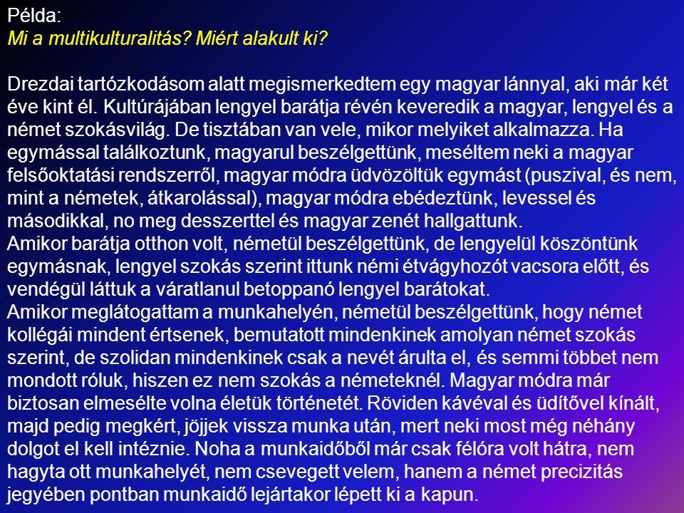 Példa: Mi a multikulturalitás? Miért alakult ki? Drezdai tartózkodásom alatt megismerkedtem egy magyar lánnyal, aki már két éve kint él. Kultúrájában