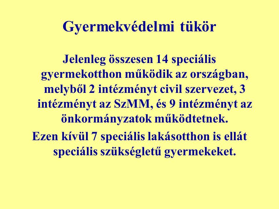 Gyermekvédelmi tükör Jelenleg összesen 14 speciális gyermekotthon működik az országban, melyből 2 intézményt civil szervezet, 3 intézményt az SzMM, és