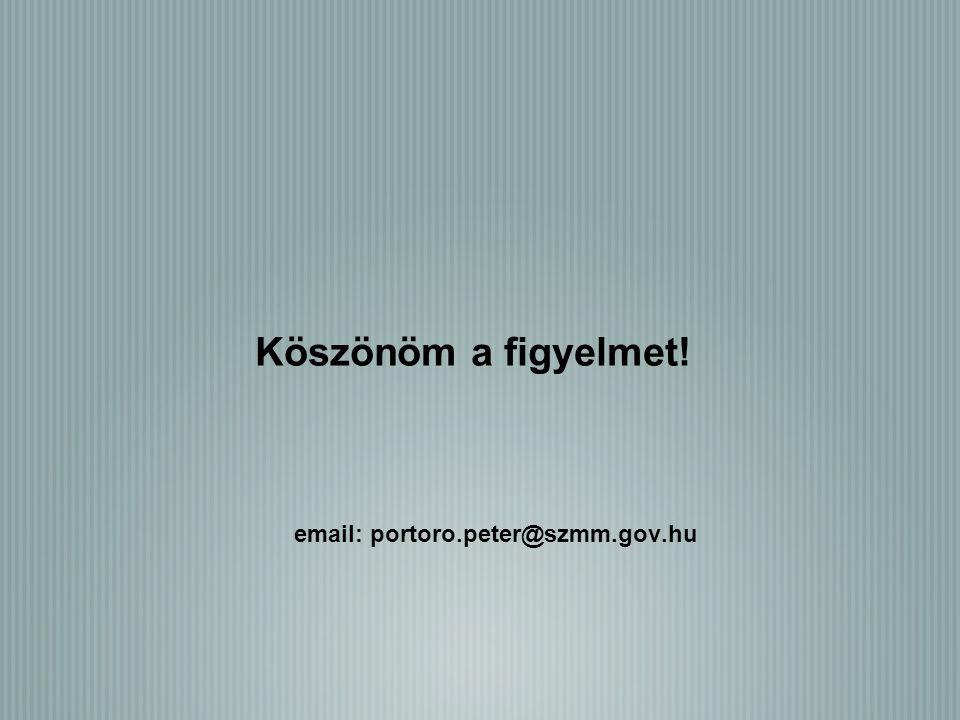 Köszönöm a figyelmet! email: portoro.peter@szmm.gov.hu