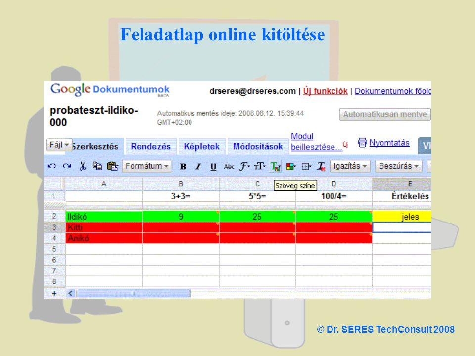 Feladatlap online kitöltése © Dr. SERES TechConsult 2008