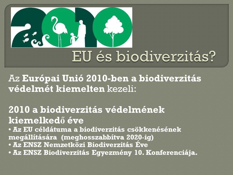 Az Európai Unió 2010-ben a biodiverzitás védelmét kiemelten kezeli: 2010 a biodiverzitás védelmének kiemelked ő éve Az EU céldátuma a biodiverzitás csökkenésének megállítására (meghosszabbítva 2020-ig) Az ENSZ Nemzetközi Biodiverzitás Éve Az ENSZ Biodiverzitás Egyezmény 10.