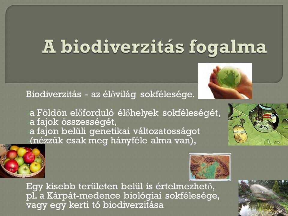 Biodiverzitás - az él ő világ sokfélesége.  a Földön el ő forduló él ő helyek sokféleségét,  a fajok összességét,  a fajon belüli genetikai változa