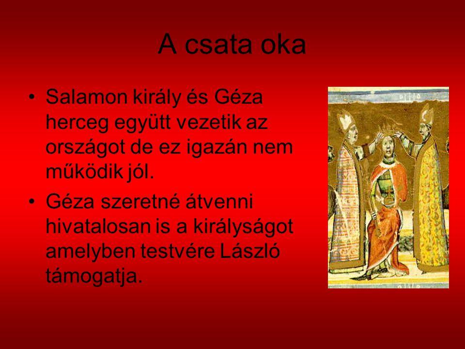 A csata oka Salamon király és Géza herceg együtt vezetik az országot de ez igazán nem működik jól. Géza szeretné átvenni hivatalosan is a királyságot