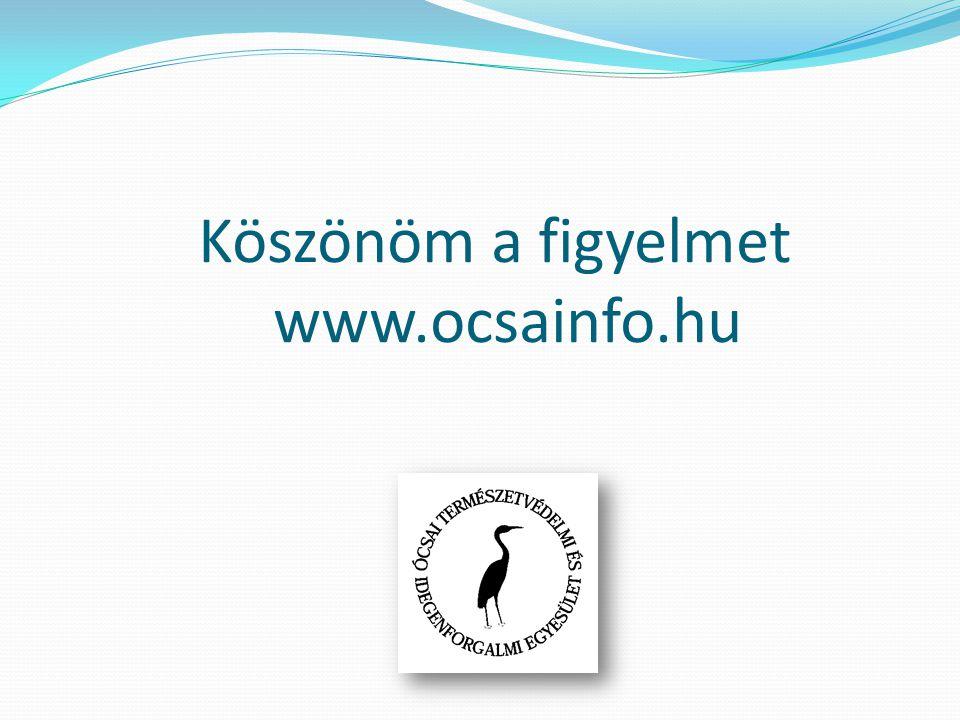 Köszönöm a figyelmet www.ocsainfo.hu