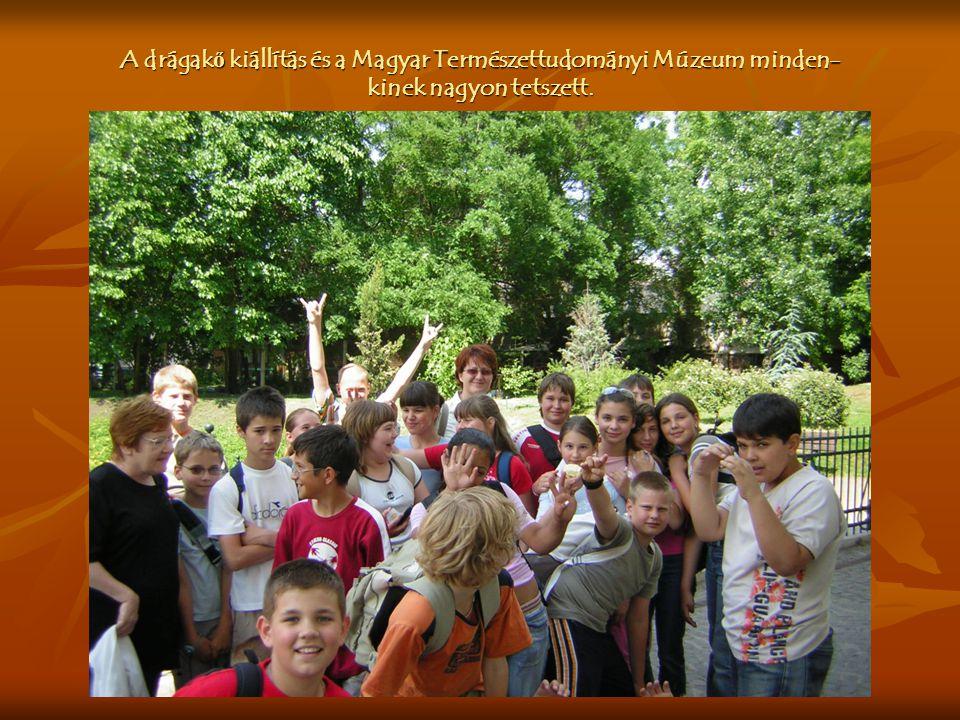 A drágak ő kiállítás és a Magyar Természettudományi Múzeum minden- kinek nagyon tetszett.
