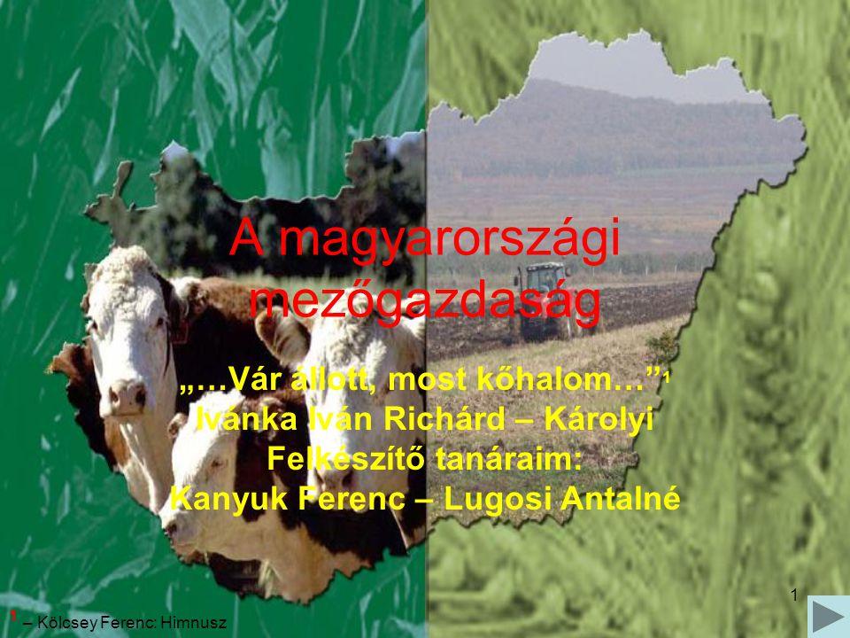 """1 A magyarországi mezőgazdaság """"…Vár állott, most kőhalom…"""" 1 Ivánka Iván Richárd – Károlyi Felkészítő tanáraim: Kanyuk Ferenc – Lugosi Antalné 1 – Kö"""