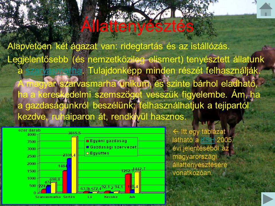 5 Állattenyésztés Alapvetően két ágazat van: ridegtartás és az istállózás. Legjelentősebb (és nemzetközileg elismert) tenyésztett állatunk a szarvasma