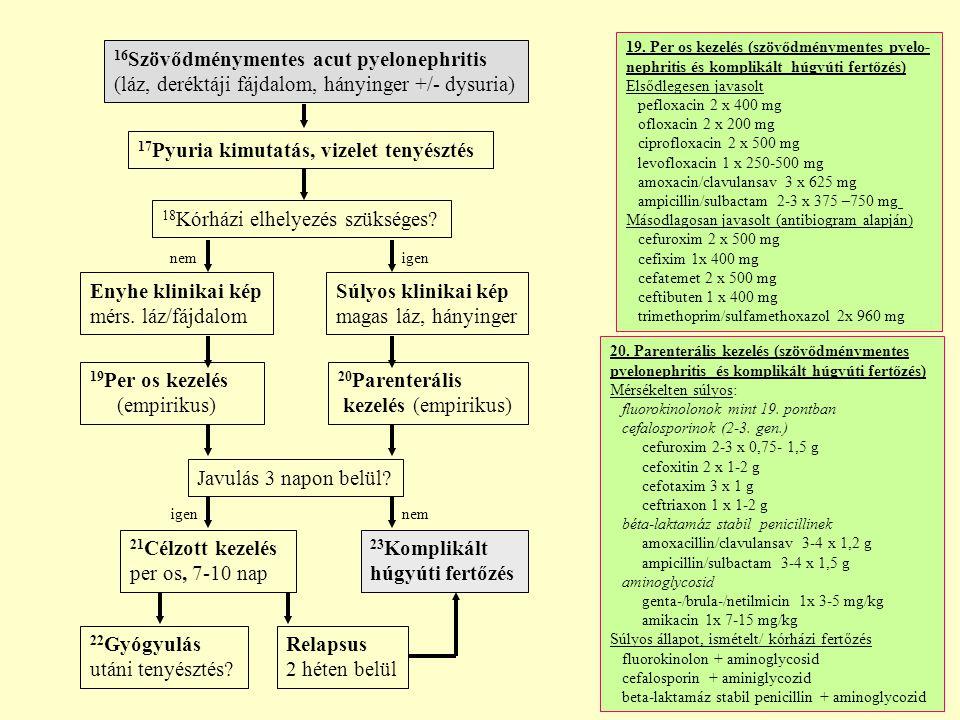 16 Szövődménymentes acut pyelonephritis (láz, deréktáji fájdalom, hányinger +/- dysuria) Enyhe klinikai kép mérs.