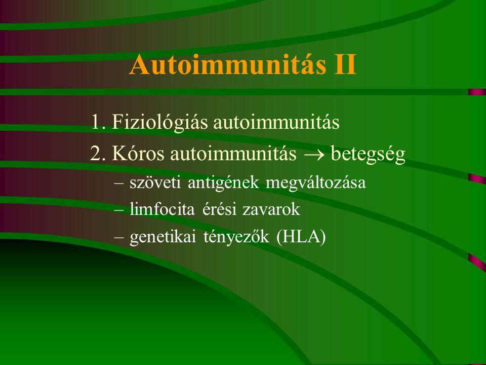 Autoimmunitás II 1. Fiziológiás autoimmunitás 2. Kóros autoimmunitás  betegség –szöveti antigének megváltozása –limfocita érési zavarok –genetikai té