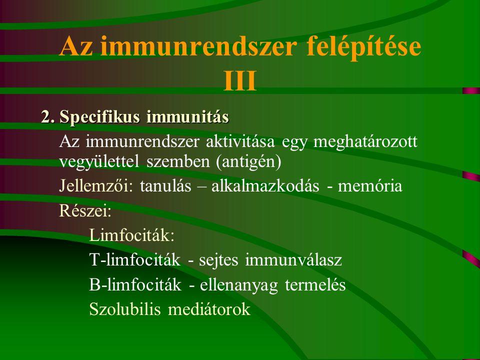 Az immunrendszer felépítése III 2. Specifikus immunitás Az immunrendszer aktivitása egy meghatározott vegyülettel szemben (antigén) Jellemzői: tanulás