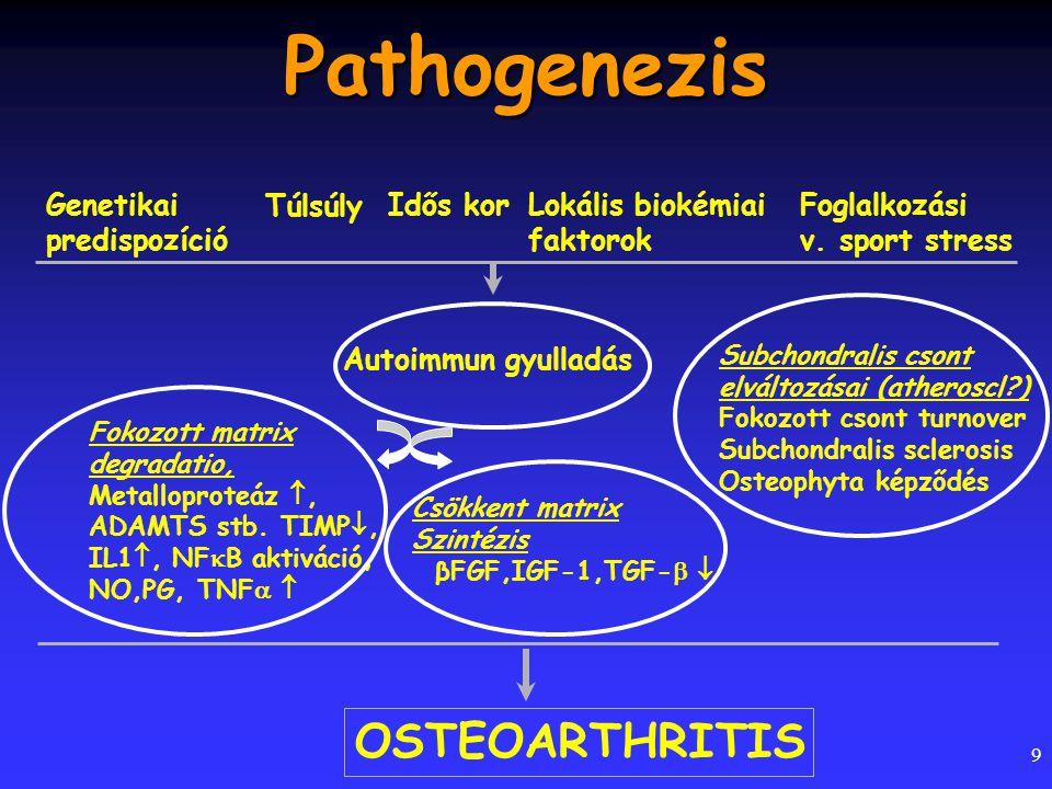 9 Genetikai predispozíció Túlsúly Idős korLokális biokémiai faktorok Foglalkozási v. sport stress Fokozott matrix degradatio, Metalloproteáz , ADAMTS