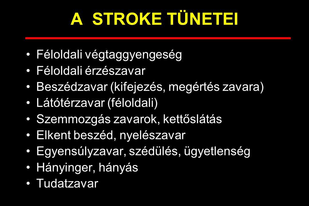 A STROKE TÜNETEI Féloldali végtaggyengeség Féloldali érzészavar Beszédzavar (kifejezés, megértés zavara) Látótérzavar (féloldali) Szemmozgás zavarok, kettőslátás Elkent beszéd, nyelészavar Egyensúlyzavar, szédülés, ügyetlenség Hányinger, hányás Tudatzavar