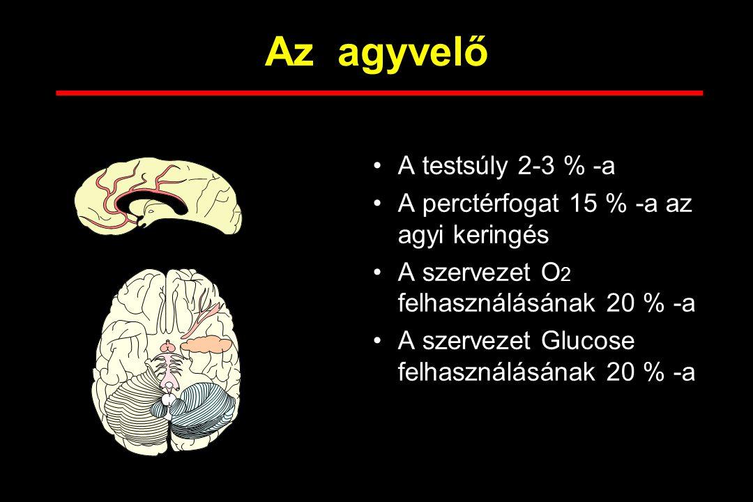 Az agyvelő A testsúly 2-3 % -a A perctérfogat 15 % -a az agyi keringés A szervezet O 2 felhasználásának 20 % -a A szervezet Glucose felhasználásának 20 % -a