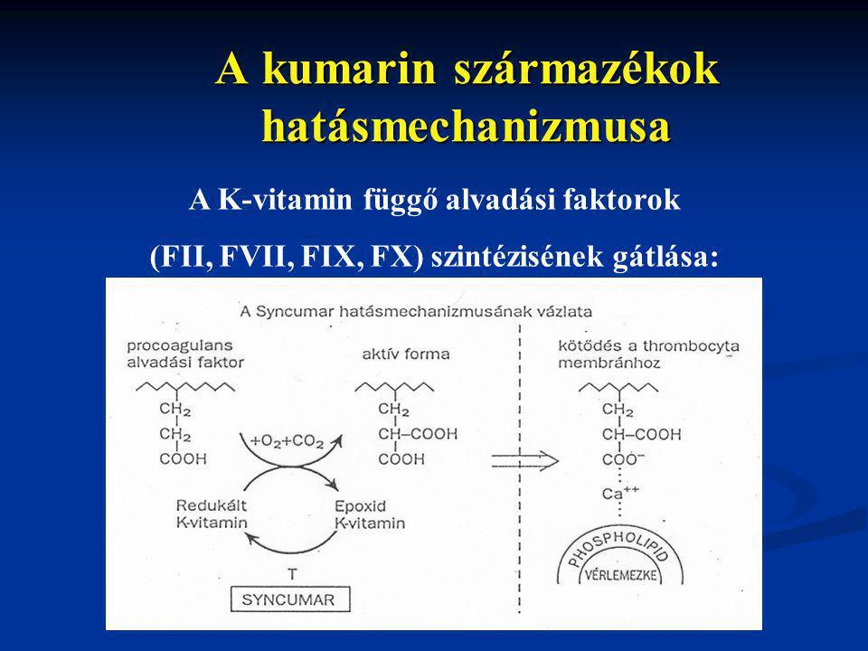 A kumarin származékok hatásmechanizmusa A K-vitamin függő alvadási faktorok (FII, FVII, FIX, FX) szintézisének gátlása: