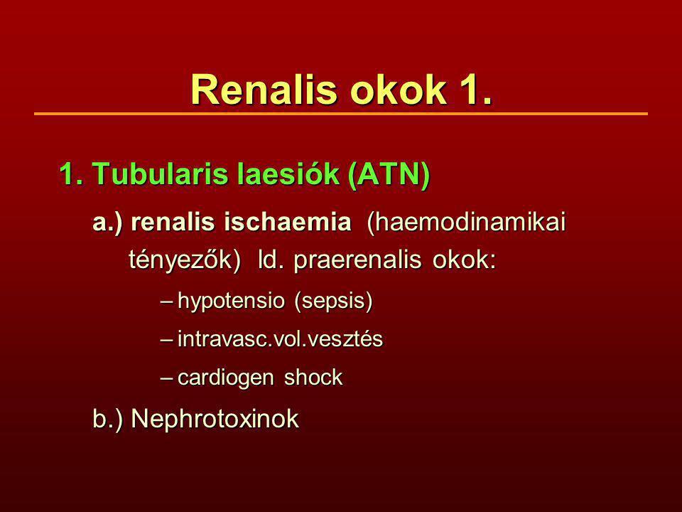 Renalis okok 1. 1. Tubularis laesiók (ATN) a.) renalis ischaemia (haemodinamikai tényezők) ld. praerenalis okok: –hypotensio (sepsis) –intravasc.vol.v